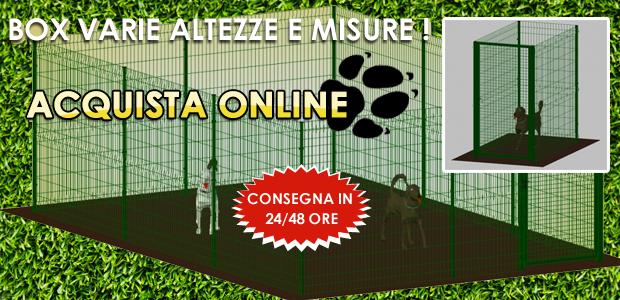 Box recinto gabbia per cani in ferro zincato verde mt 2x2 for Box per cani da esterno usati